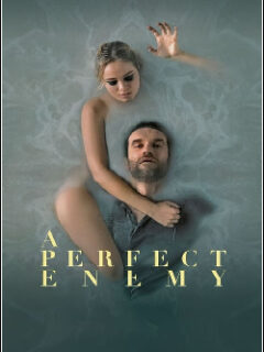 A Perfect Enemy